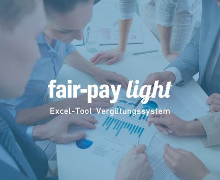 Excel Tool Vergütungssystem fair-pay light